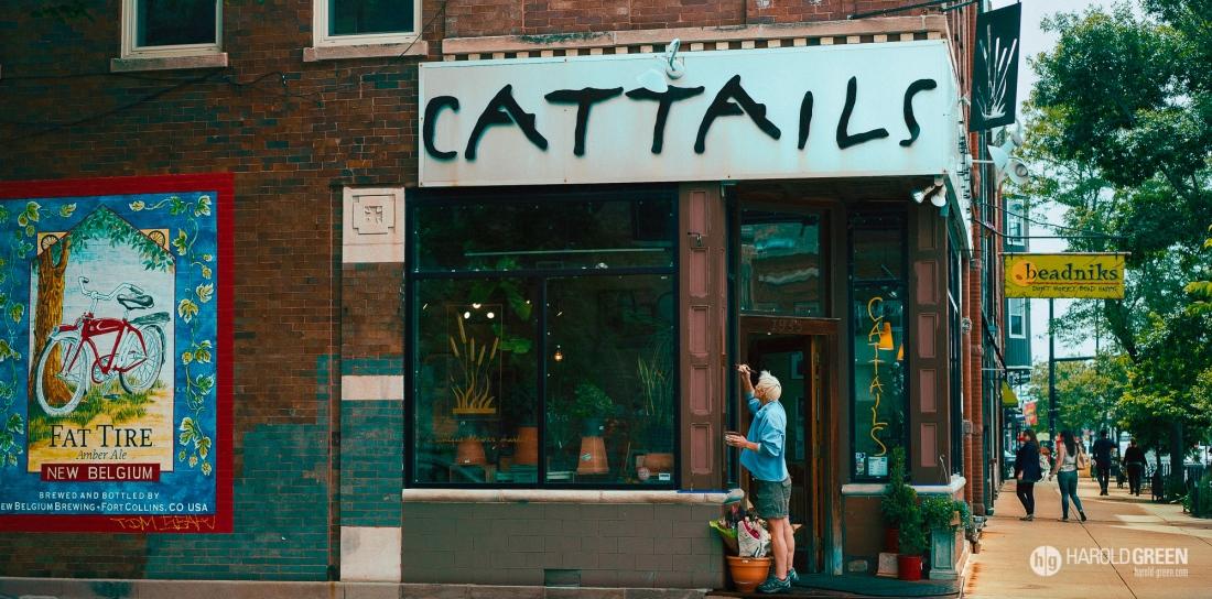 """""""Cattails"""" Chicago © 2015 Harold Green."""